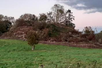 'All is revealed' as ancient hill fort finally sees the light of day